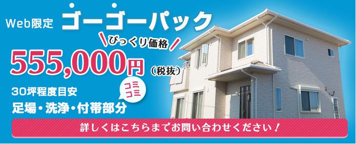 Web限定 ゴーゴーパック 555,000円